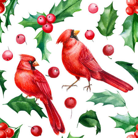 Christmas holly leaves and berries, red cardinal birds, Seamless pattern, watercolor hand drawn illustration