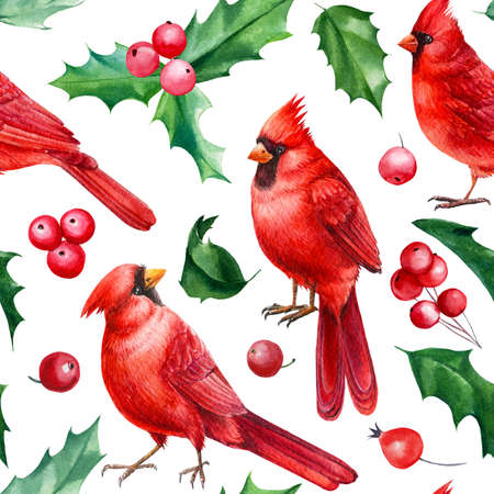 Red cardinal birds, Seamless pattern, Christmas holly leaves and berries, watercolor hand drawn illustration