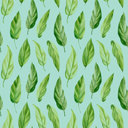 Seamless pattern with tropical leaf palm. Green leaves, watercolor drawing Zdjęcie Seryjne