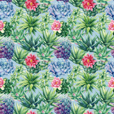 Seamless pattern with succulents. Watercolor botanical illustration, background succulents, haworthia, cacti, echeveria 版權商用圖片