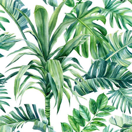 Tropical palm leaves on an isolated background. Watercolor illustration, seamless pattern Banco de Imagens