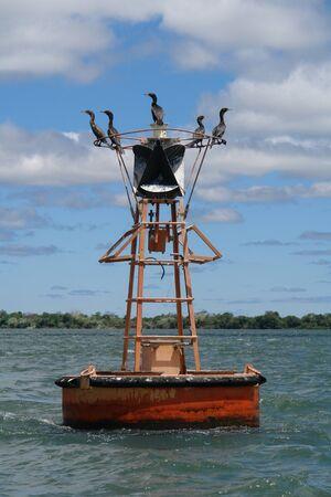 buoy: Buoy on the river