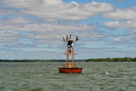 buoy: Buoy whit ducks