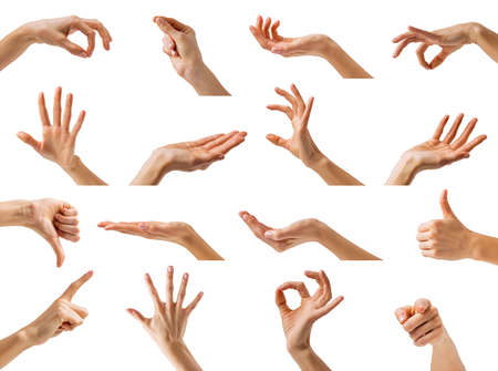 Collection of different hands gestures