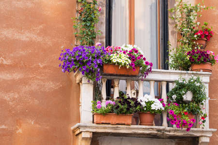 balcony: Balcony with colorful flowers
