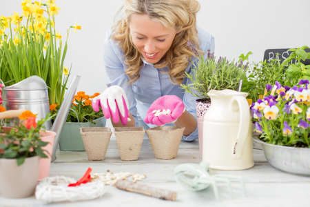 flowers garden: Woman planting seeds Stock Photo
