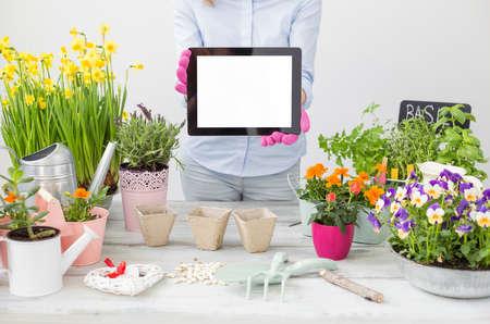 Gardener holding portable tablet Stock Photo