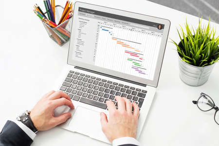 timescale: Businessman using project management software on compter