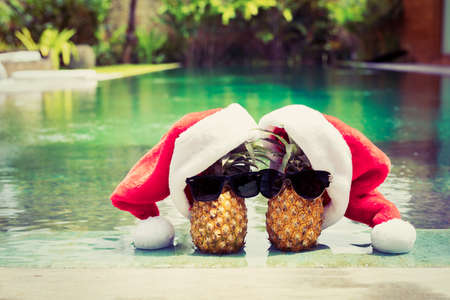 Pineapple couple in Santa hats hanging by the pool