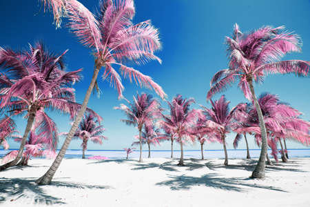 Palm trees on idyllic paradise beach in infrared colors