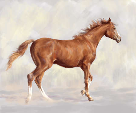Drawing by hand a running horse on a light background.