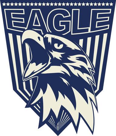 Head of the eagle.  イラスト・ベクター素材