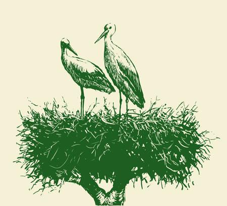 Storks in the nest Stock Vector - 77075237
