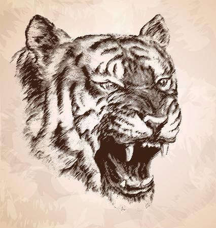 tigress: The head of the evil tiger