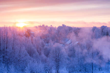 Christmas morning. A beautiful frosty morning. Beautiful dawn. Hoarfrost on the branches of trees. 스톡 콘텐츠