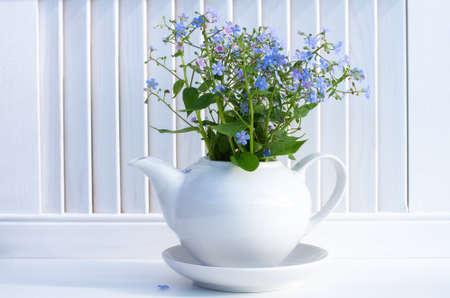 A bouquet of blue forget-me-nots in a white ceramic teapot. White background, spring composition Foto de archivo