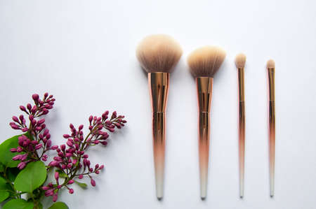 Different professional cosmetic brushes on white background. A branch of lilac on a white background.