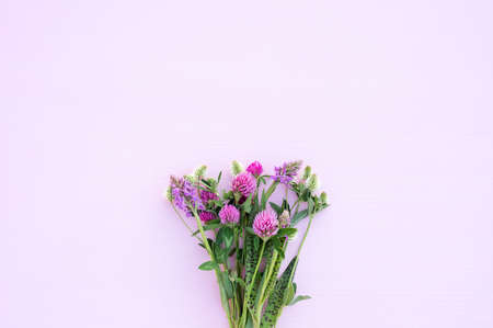 Bouquet of wild flowers on a light pink background close-up. Gentle romantic background, pink and white clover. View from above.