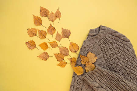 Autumn composition of leaves and a warm sweater. Flat lay. Yellow background. Autumn concept.