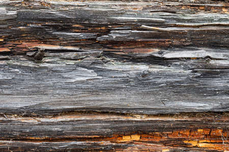 Old log wall. Texture of the wooden wall of an old house. Close up. Фото со стока