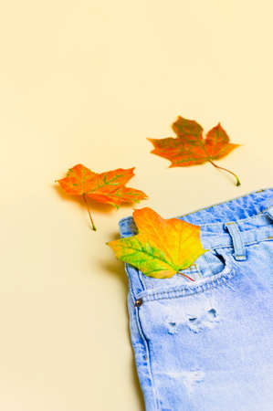 Bright maple autumn leaves in jeans pocket. Denim texture. Autumn concept. Flat lay. Copy space. Close up. Vertical crop. Фото со стока