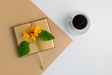 Notebook planner for work, coffee cup, yellow sunflower flower. Flat lay.