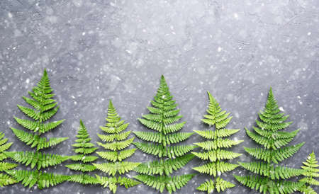 Creative new year background. Christmas trees made from fern leaves. Flat lay. Holiday concept.