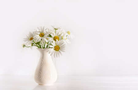 Bouquet of field chamomile flowers in vase on white background. Copy space. Bouquet of field chamomile flowers in vase on white background. Copy space. Selective focus. Beautiful floral background.