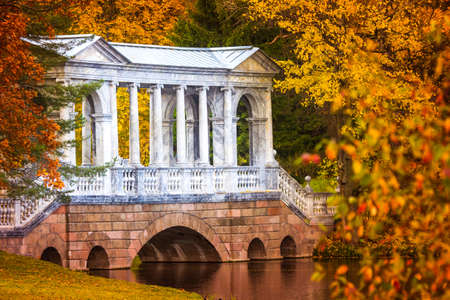 Russia. Autumn Park in Pushkin. Neighborhoods of St. Petersburg in the autumn. Trees with autumn leaves. Russia in the fall.