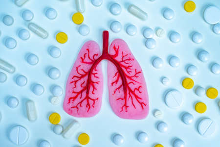 Human lungs surrounded by pills. Parts of the human body. Anatomy. Treatment of lung diseases. Complications on the lungs after coronavirus. Pneumonia. Tuberculosis.
