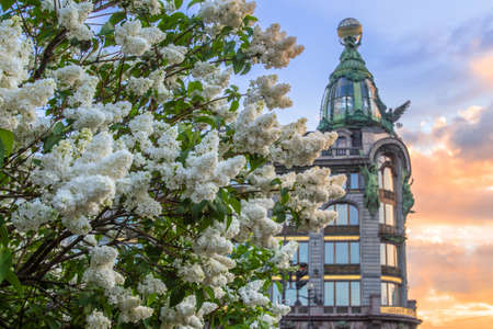 Saint Petersburg. Nevsky Avenue. Summer in St. Petersburg. Russia. Petersburg in the spring. The lilac is blooming. Sunny day. Sights of Russia.