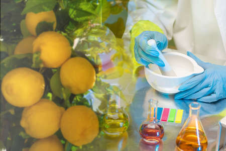 Development of modern multivitamin complexes. Vitamin C for the prevention of colds. Vitamins to increase immunity. Health promotion. Natural sources of useful substances.