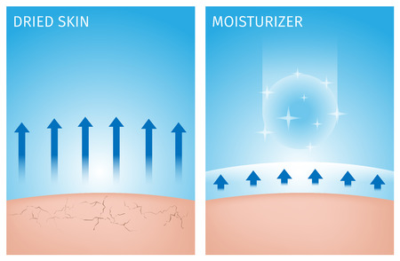 dried skin and skin with moisturizer , before and after 일러스트