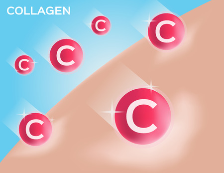 collagen: collagen make skin white vector
