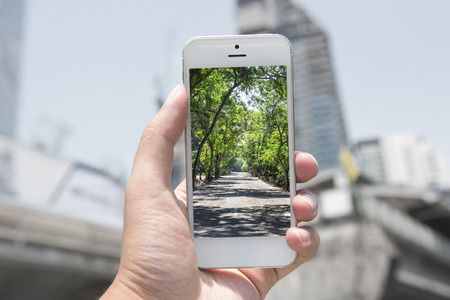 nature picture: mobile , smart phone with nature picture and city at the background , nature mobile set 2 Stock Photo