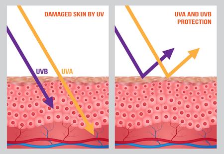 Protección UV, UV A y UV B Foto de archivo - 57791682