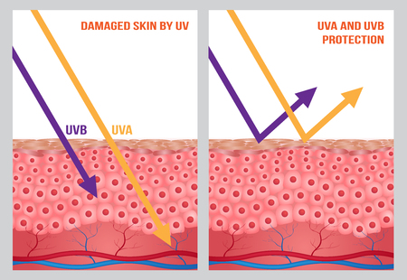 UV-bescherming, uv-a en uv-b Vector Illustratie