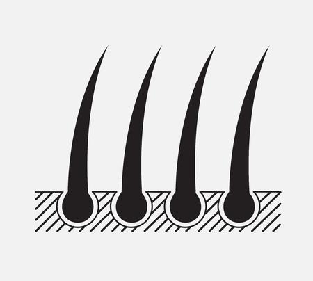 dermis: hair vector graphic , hair icon