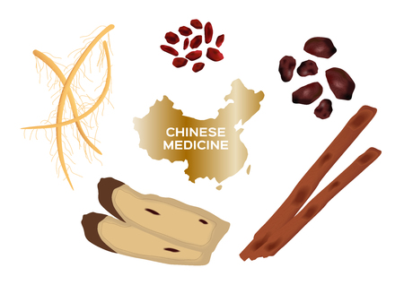 oriental medicine: Different kind of Chinese herbal medicine for soup food on white background