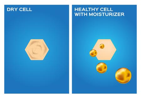 dry skin: moisturizer make dry skin to healthy skin vector