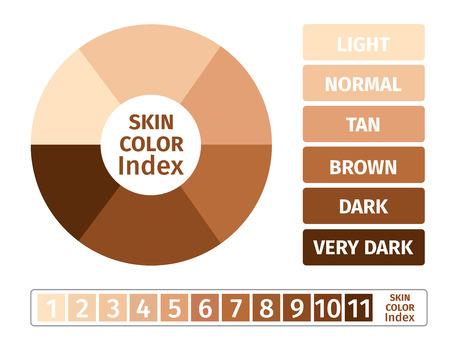 uv index: skin color index , infographic vector . 3 chart of skin Illustration