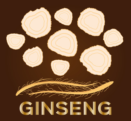 traditional medicine: ginseng vector , ginseng of small piece , ancient traditional medicine