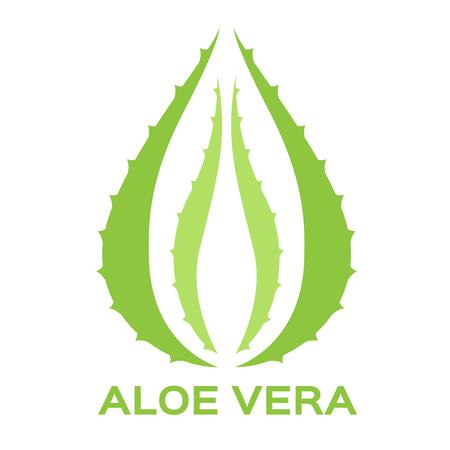 vera: Aloe vera and drop vector illustration. logo design