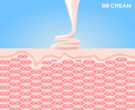 bb cream make skin smooth , skin vector