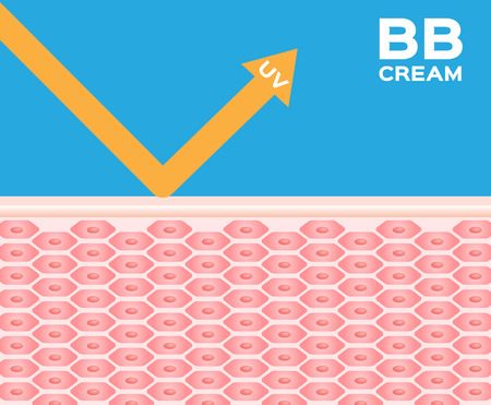 melanin: bb cream and lotion protect skin from uv , uv protection vector