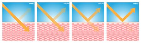 penetracion: spf, vector de protección UV, 4 tipo de spf Vectores