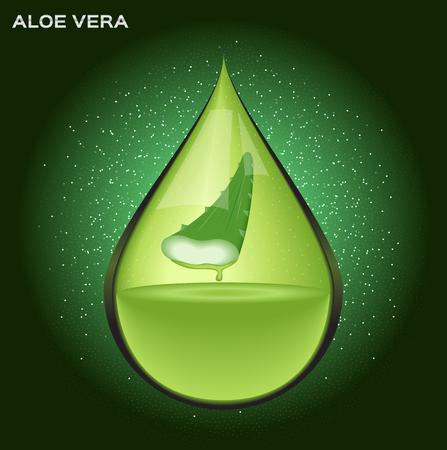 spiked hair: aloe vera drop , aloe vera icon