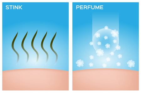 balsam: vstink skin and skin with perfume vector