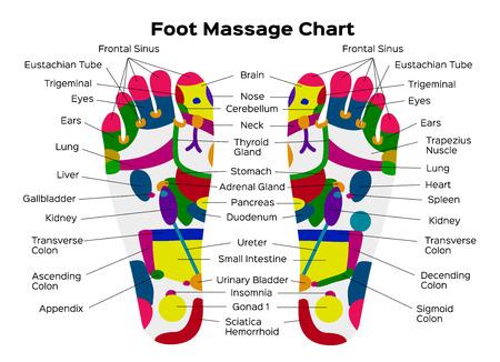 Ilustración común del vector: Tabla de reflexología del pie con la descripción exacta de los órganos internos correspondientes y partes del cuerpo. Ilustración vectorial sobre fondo negro. anatomía