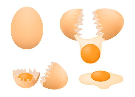 broken eggs: egg yolk vector
